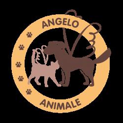 Angelo Animale